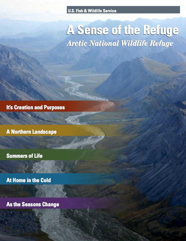 A Sense of the Refuge